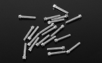 RC4WD Miniature Scale Hex Bolts  (M2 x 10mm) (Silver)